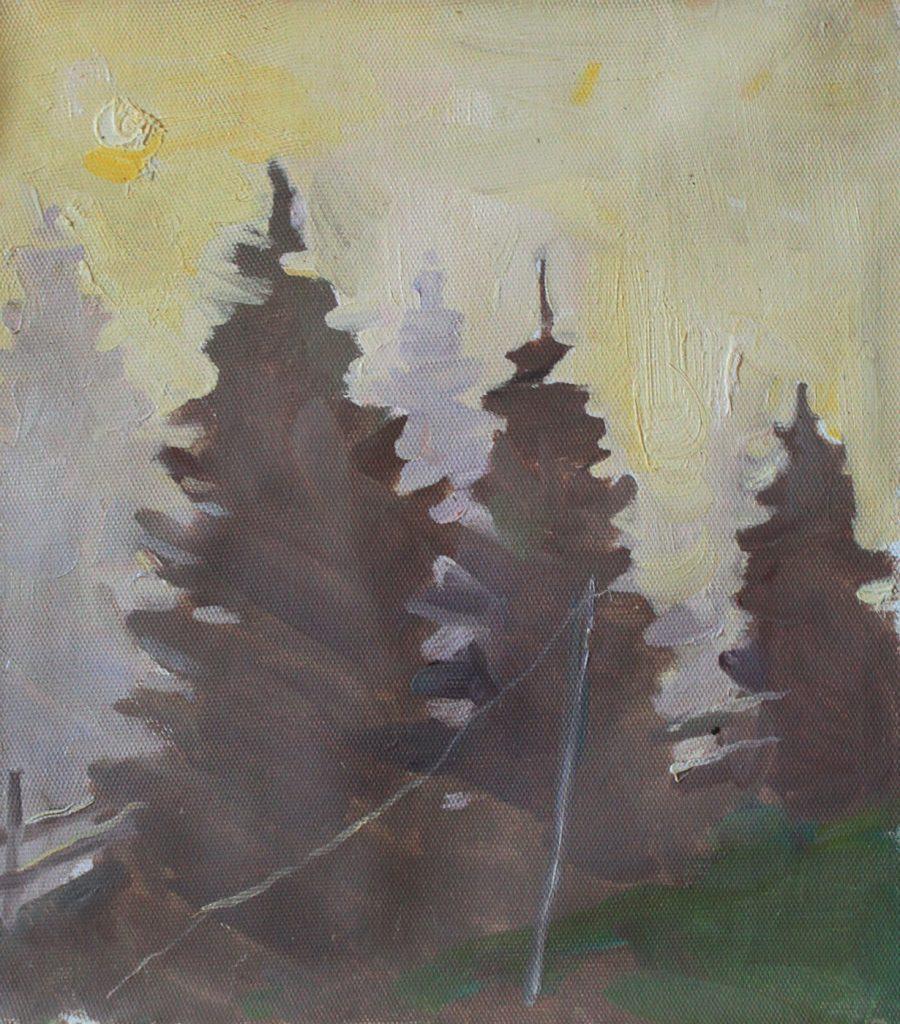 Misty Carpathian Spruce